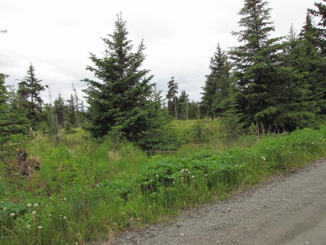 L2C Cape Ninilchik Avenue, Anchor Point, AK 99556 (MLS #19-12069) :: RMG Real Estate Network | Keller Williams Realty Alaska Group