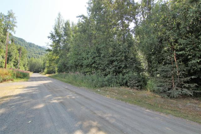 13654 Constitution Drive, Palmer, AK 99645 (MLS #19-12081) :: Roy Briley Real Estate Group