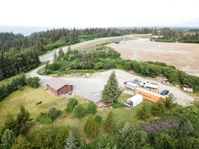 41420 Sterling Highway, Homer, AK 99603 (MLS #19-12096) :: Wolf Real Estate Professionals