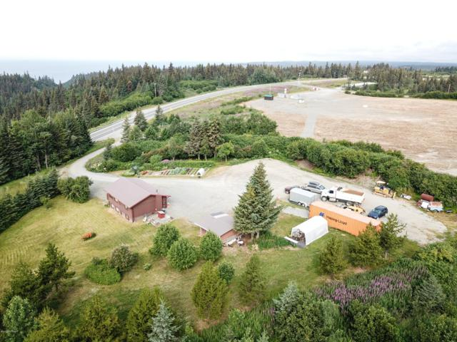 41420 Sterling Highway, Homer, AK 99603 (MLS #19-12100) :: Wolf Real Estate Professionals