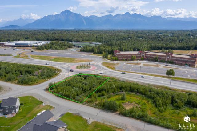 9236 E Silver Spring Circle, Palmer, AK 99645 (MLS #19-12163) :: RMG Real Estate Network | Keller Williams Realty Alaska Group