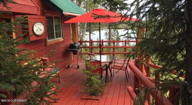 38410 Salmon Circle, Soldotna, AK 99669 (MLS #19-12165) :: Roy Briley Real Estate Group