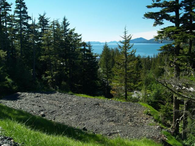 102 Cabin Ridge Road, Cordova, AK 99574 (MLS #19-12166) :: RMG Real Estate Network | Keller Williams Realty Alaska Group