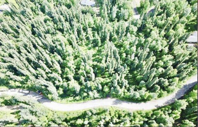 B2 L3 Heather Drive, Fairbanks, AK 99712 (MLS #19-12326) :: Roy Briley Real Estate Group