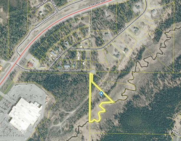 501 Sharkathmi Avenue, Soldotna, AK 99669 (MLS #19-12359) :: RMG Real Estate Network | Keller Williams Realty Alaska Group