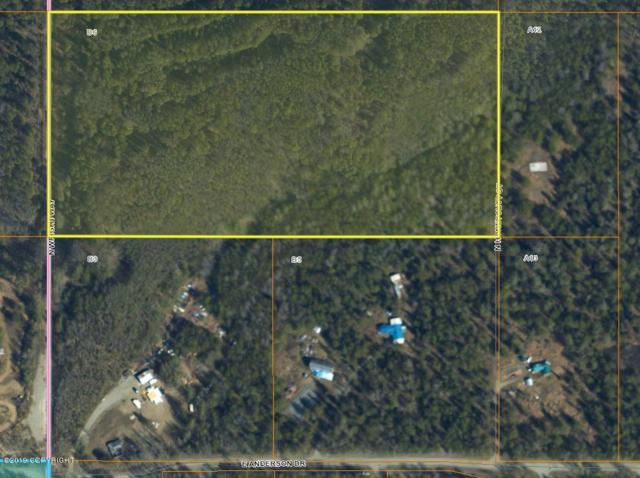 12442 N Honeycutt Street, Sutton, AK 99674 (MLS #19-12370) :: RMG Real Estate Network | Keller Williams Realty Alaska Group
