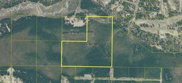 Ptn Sec 27 Forsi Street, Soldotna, AK 99669 (MLS #19-12392) :: RMG Real Estate Network | Keller Williams Realty Alaska Group