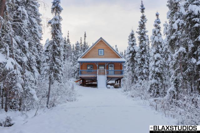 1375 Tatica Court, Fairbanks, AK 99712 (MLS #19-1241) :: RMG Real Estate Network | Keller Williams Realty Alaska Group