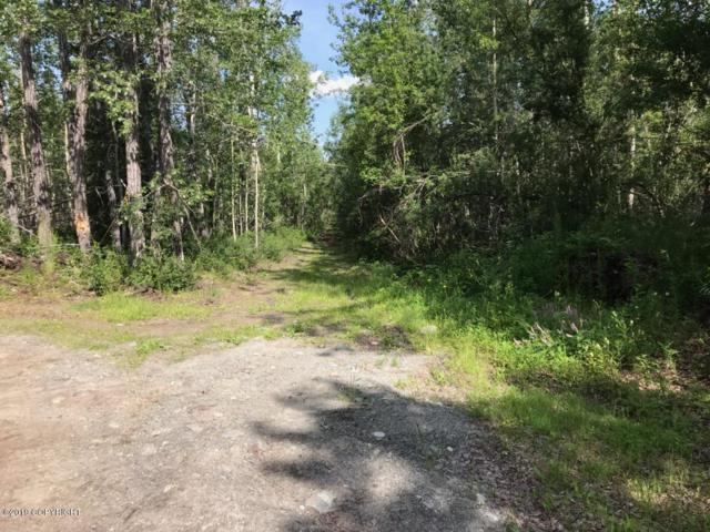 Mi 89.2 Richardson Highway, Copper Center, AK 99573 (MLS #19-12559) :: RMG Real Estate Network | Keller Williams Realty Alaska Group