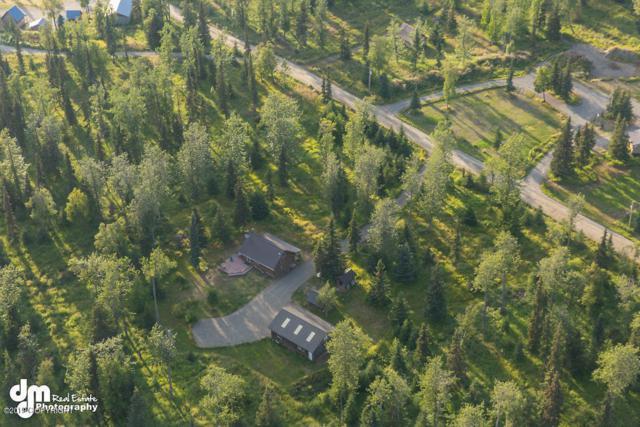 65357 Lingonberry Avenue, Ninilchik, AK 99639 (MLS #19-12932) :: RMG Real Estate Network | Keller Williams Realty Alaska Group