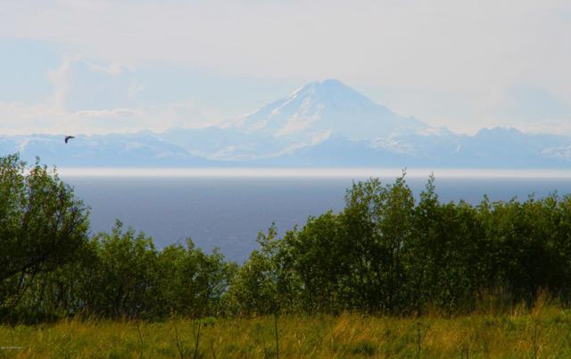 L11 Sunset Drive, Ninilchik, AK 99639 (MLS #19-13014) :: RMG Real Estate Network | Keller Williams Realty Alaska Group