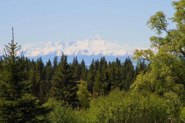 Tr C Magoo Street, Ninilchik, AK 99639 (MLS #19-13015) :: RMG Real Estate Network | Keller Williams Realty Alaska Group