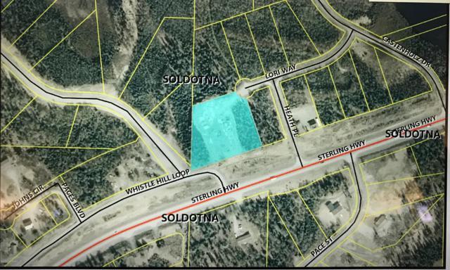 503 Lori Way, Soldotna, AK 99669 (MLS #19-13096) :: RMG Real Estate Network | Keller Williams Realty Alaska Group
