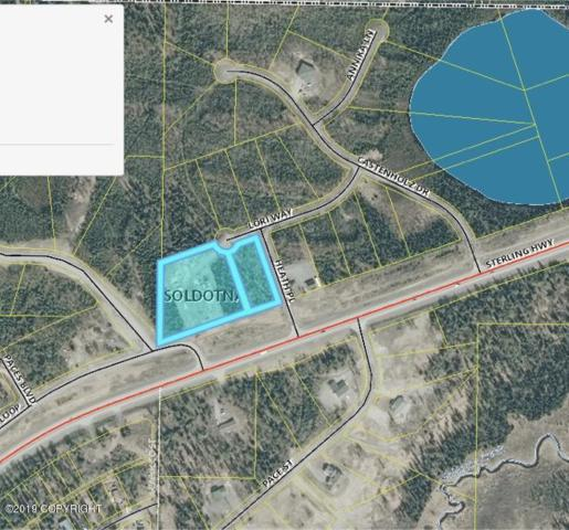503 Lori Way, Soldotna, AK 99669 (MLS #19-13098) :: RMG Real Estate Network | Keller Williams Realty Alaska Group