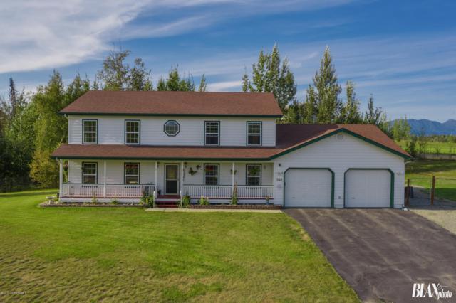 358 N Lauren Lane, Palmer, AK 99645 (MLS #19-13172) :: RMG Real Estate Network | Keller Williams Realty Alaska Group