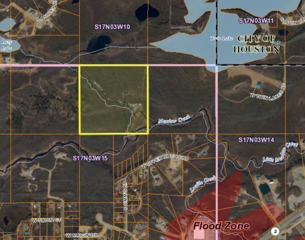 A020 No Road, Houston, AK 99694 (MLS #19-13225) :: RMG Real Estate Network | Keller Williams Realty Alaska Group