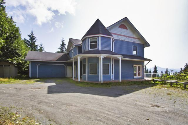 1585 Race Road, Homer, AK 99603 (MLS #19-13239) :: Roy Briley Real Estate Group