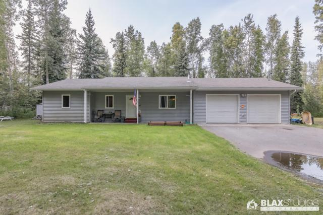 2535 Nelson Road, North Pole, AK 99705 (MLS #19-13246) :: RMG Real Estate Network | Keller Williams Realty Alaska Group