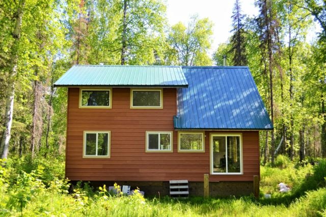 B005 Off Whigmi Road, Talkeetna, AK 99676 (MLS #19-13260) :: RMG Real Estate Network | Keller Williams Realty Alaska Group