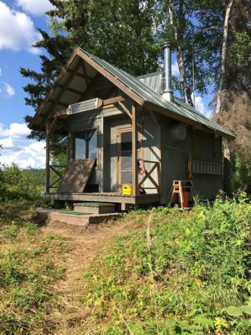 Tr B No Road, Remote, AK 99000 (MLS #19-13335) :: RMG Real Estate Network | Keller Williams Realty Alaska Group