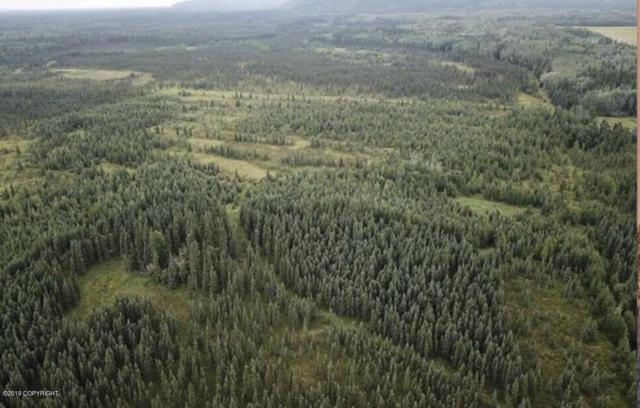 LB Tricket Lane, Fairbanks, AK 99712 (MLS #19-13400) :: RMG Real Estate Network | Keller Williams Realty Alaska Group