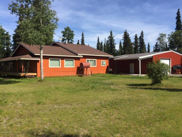 23305 Cohoe King Loop, Kasilof, AK 99610 (MLS #19-13407) :: RMG Real Estate Network | Keller Williams Realty Alaska Group