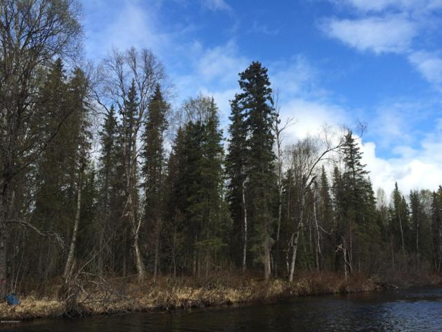 Tr N No Road Mama Bear Lake, Talkeetna, AK 99676 (MLS #19-1373) :: The Adrian Jaime Group | Keller Williams Realty Alaska
