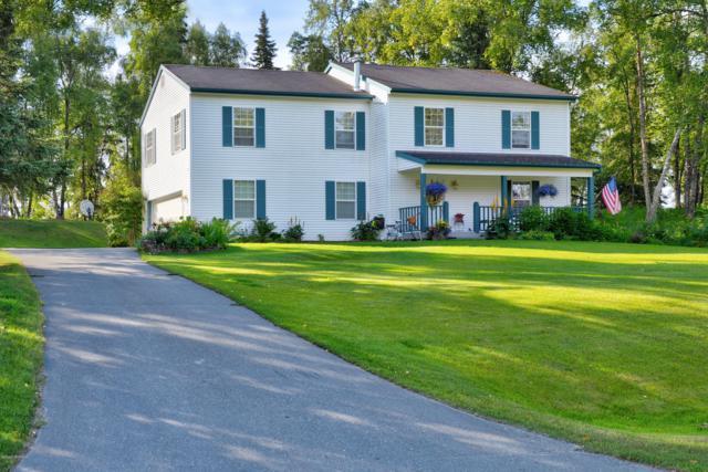 258 River Watch Drive, Soldotna, AK 99669 (MLS #19-13805) :: RMG Real Estate Network | Keller Williams Realty Alaska Group