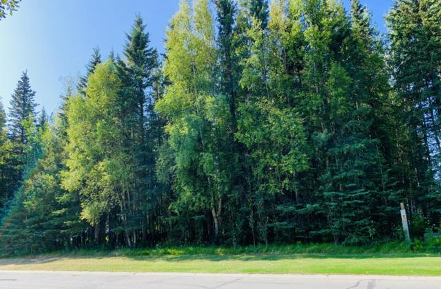 375 Diane Lane, Soldotna, AK 99669 (MLS #19-13832) :: RMG Real Estate Network | Keller Williams Realty Alaska Group