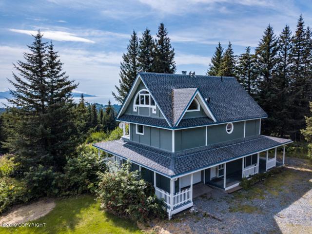 65299 Diamond Ridge Road, Homer, AK 99603 (MLS #19-13855) :: Roy Briley Real Estate Group