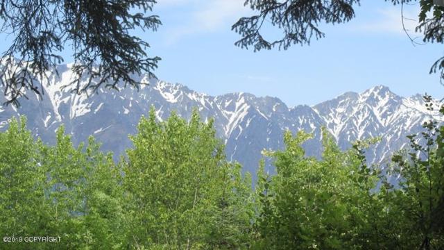 L1 Chilkat Lake Road, Haines, AK 99827 (MLS #19-13898) :: RMG Real Estate Network | Keller Williams Realty Alaska Group