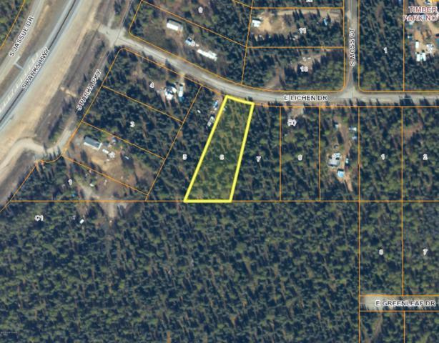 15704 E Lichen Drive, Talkeetna, AK 99676 (MLS #19-13944) :: RMG Real Estate Network | Keller Williams Realty Alaska Group