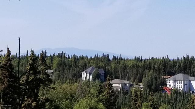 5501 E 97th Avenue, Anchorage, AK 99507 (MLS #19-13968) :: Roy Briley Real Estate Group