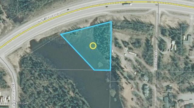 8715 Kenai Spur Highway, Kenai, AK 99611 (MLS #19-1398) :: The Huntley Owen Team