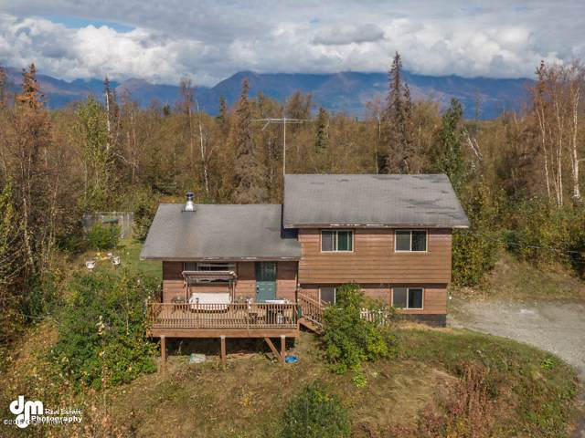 10131 E Puffin Drive, Palmer, AK 99645 (MLS #19-15631) :: RMG Real Estate Network | Keller Williams Realty Alaska Group
