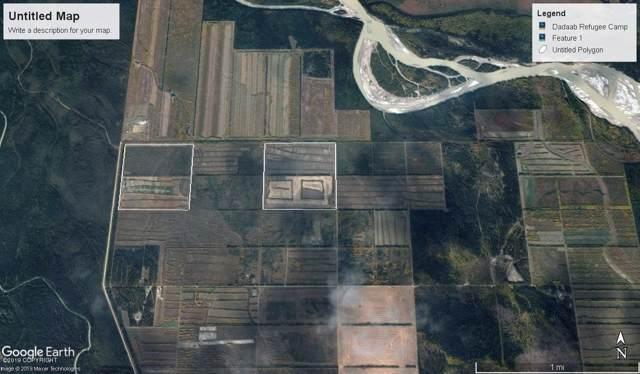000 Cummings Road, Delta Junction, AK 99737 (MLS #19-15648) :: Roy Briley Real Estate Group