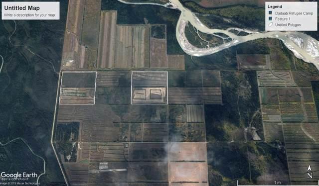 000 Cummings Road, Delta Junction, AK 99737 (MLS #19-15651) :: Roy Briley Real Estate Group