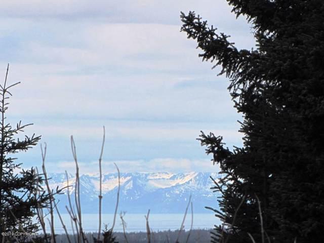Tr 2 Belnap Drive, Homer, AK 99603 (MLS #19-15675) :: RMG Real Estate Network | Keller Williams Realty Alaska Group