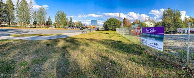 2930 Cheechako Street, Anchorage, AK 99503 (MLS #19-15716) :: RMG Real Estate Network | Keller Williams Realty Alaska Group
