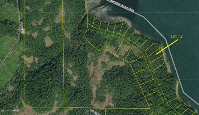 L12 Frederick Point, Petersburg, AK 99833 (MLS #19-15742) :: Wolf Real Estate Professionals