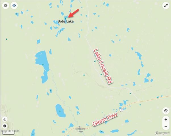 Tr 8 No Road, Glennallen, AK 99588 (MLS #19-1576) :: The Huntley Owen Team