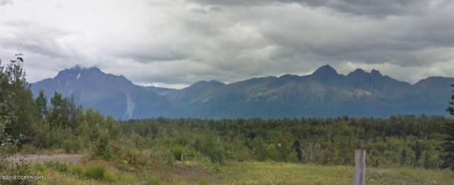 465 N Wilderness Drive, Wasilla, AK 99654 (MLS #19-15776) :: RMG Real Estate Network | Keller Williams Realty Alaska Group