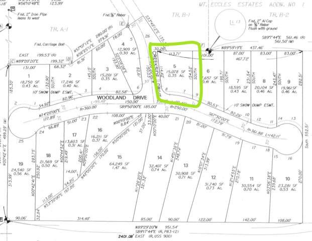 820 Woodland Drive, Cordova, AK 99574 (MLS #19-15804) :: RMG Real Estate Network | Keller Williams Realty Alaska Group