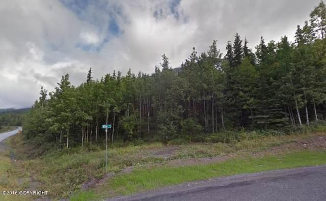 Charlice Tr E  Eagle River Road, Eagle River, AK 99577 (MLS #19-15896) :: Alaska Realty Experts