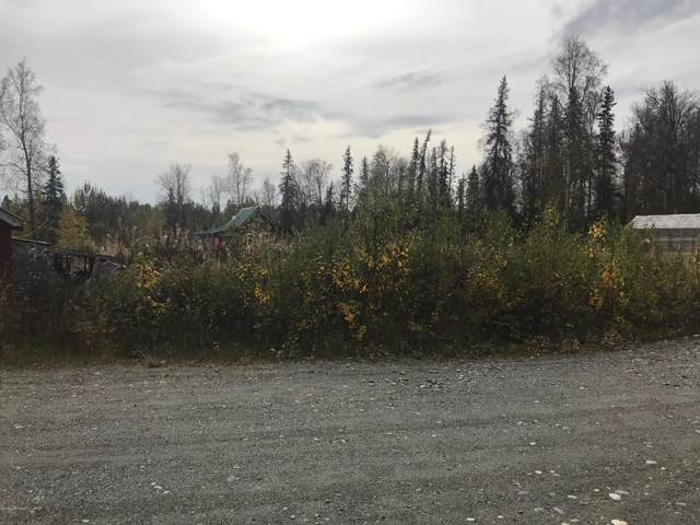 360 E Twana Circle, Wasilla, AK 99654 (MLS #19-15936) :: Core Real Estate Group