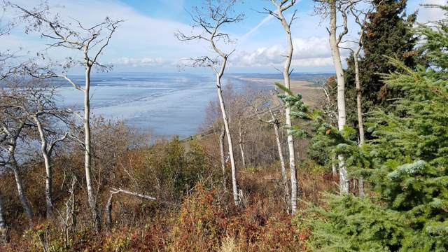 NHN Villages Scenic Parkway, Anchorage, AK 99516 (MLS #19-15984) :: Core Real Estate Group