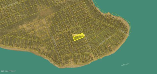 L3 B4 Caribou Island, Sterling, AK 99672 (MLS #19-1625) :: The Huntley Owen Team
