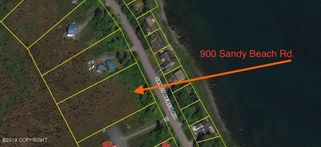 900 Sandy Beach Road, Petersburg, AK 99833 (MLS #19-1638) :: The Huntley Owen Team