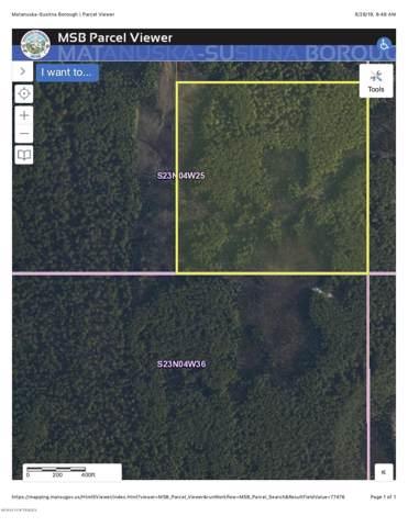 D002 No Road, Willow, AK 99688 (MLS #19-16468) :: RMG Real Estate Network | Keller Williams Realty Alaska Group