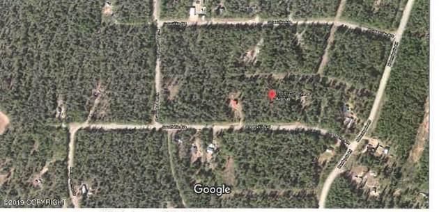 20031 E Good Fishin Avenue, Willow, AK 99688 (MLS #19-16496) :: Wolf Real Estate Professionals